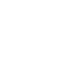 Omer Decugis