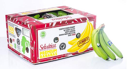 Banane Jumbo Premium Selvatica