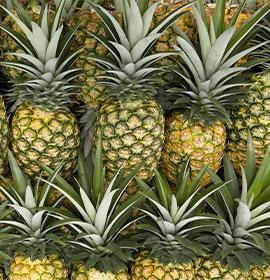 Bratigny fruits exotiques - Omer Decugis MIN Rungis