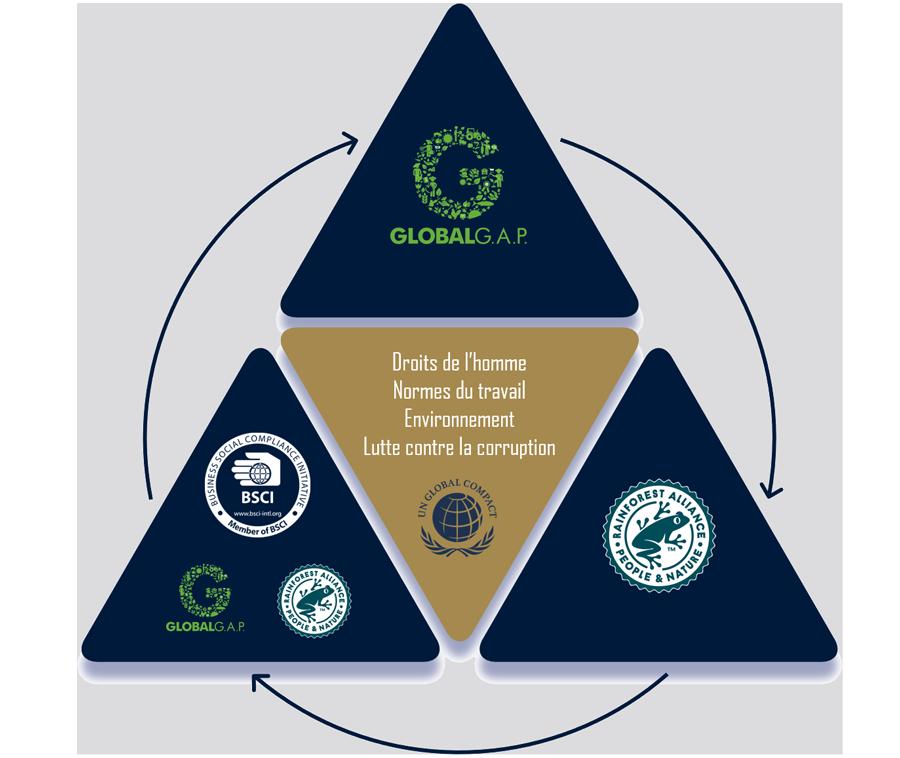 3 piliers développement durable