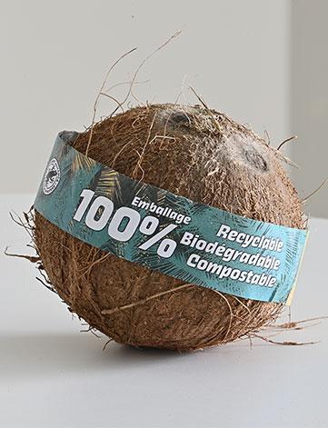 Noix de coco ecoresponsable Dibra - siim - Omer Decugis