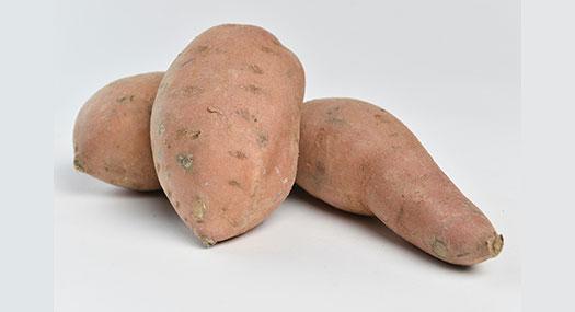 Patate douce - Omer Decugis