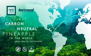 SIIM Terrasol: world's first carbon neutral pineapple